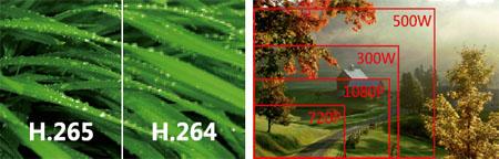Intelli-S ofrece una tecnológica de iluminación en condiciones de falta de luz extrema, ofreciendo una excelente visibilidad del entorno con una iluminación muy tenue, muestra imágenes en color con claridad incluso con una iluminación de 0.002Lux